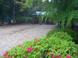 Iwama Aikijinja in the spring rain.