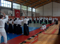 Bokken practice at  Mamara University gymnasium.