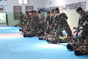 Aikido techniques used in combat technique