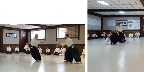Homma Kancho demonstrating at the Keiko Soran Clinic