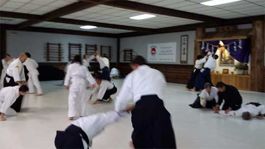 what-is-aikido